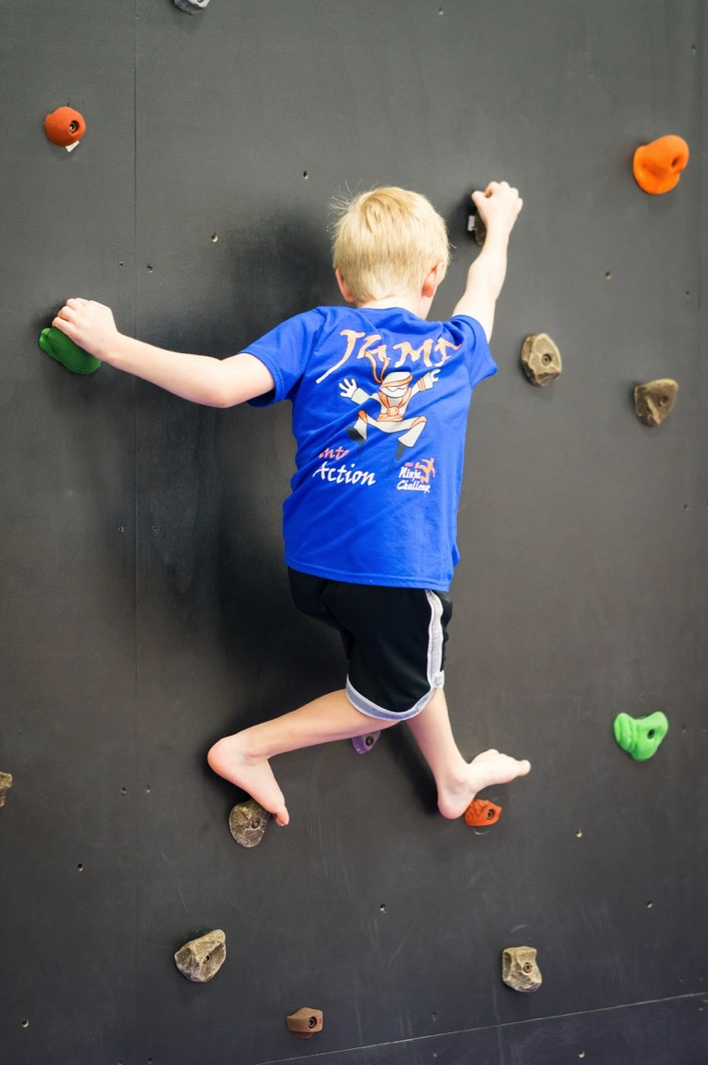 jr ninja climbing rockwall